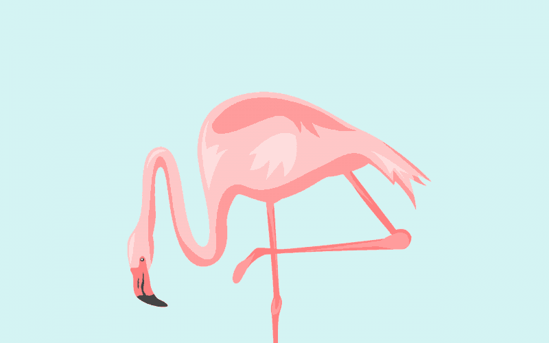 FREEBIES  //  PRETTY IN PINK FLAMINGOS