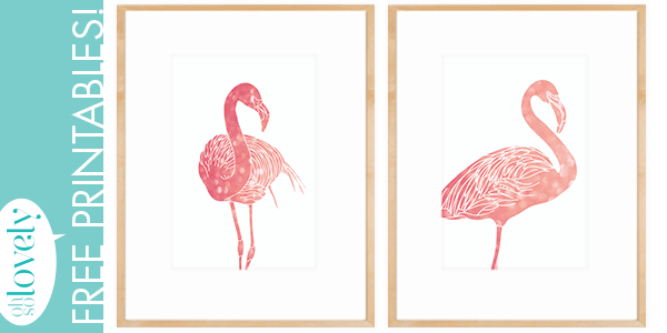 flamingo freebies