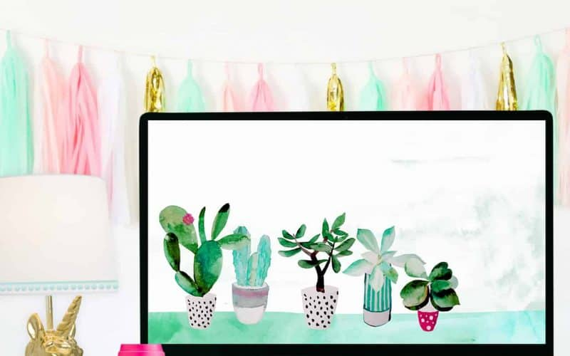 FREEBIE  //  SUCCULENT DESKTOP WALLPAPER