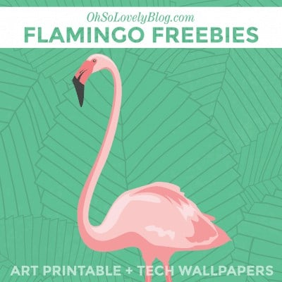 Free Flamingo Art Print and Tech Wallpapers