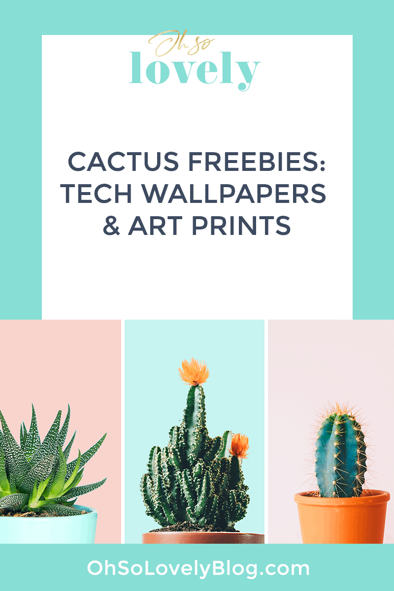 FREE cactus prints and tech wallpapers - three designs to choose from!