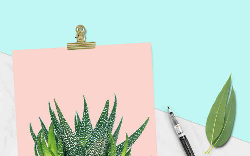 FREEBIES // CACTUS PRINTS AND TECH WALLPAPERS
