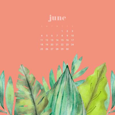 FREE June desktop wallpapers calendars - 3 colors to choose from!