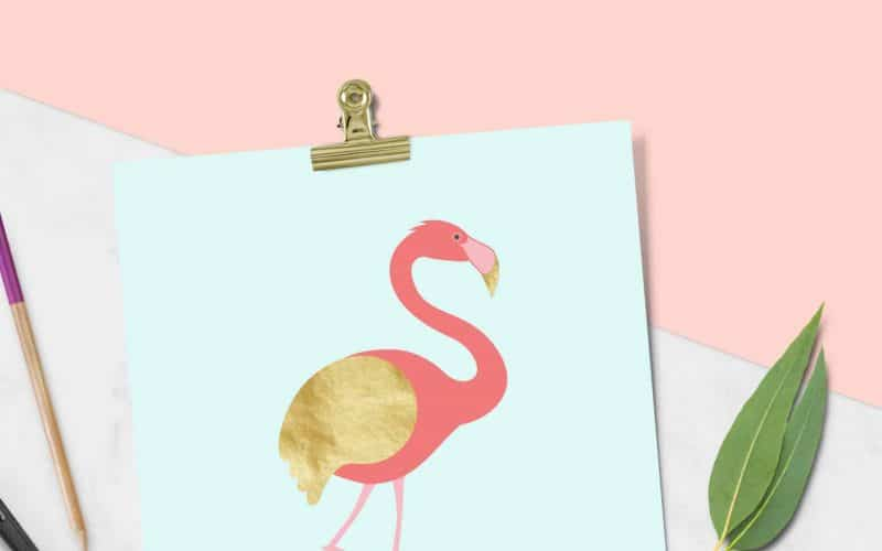 FREEBIES  //  GOLDEN WING FLAMINGO