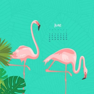 Audrey Kuether of Oh So Lovely blog shares 8 fun, summery, and free June desktop wallpaper calendars. Download yours today!