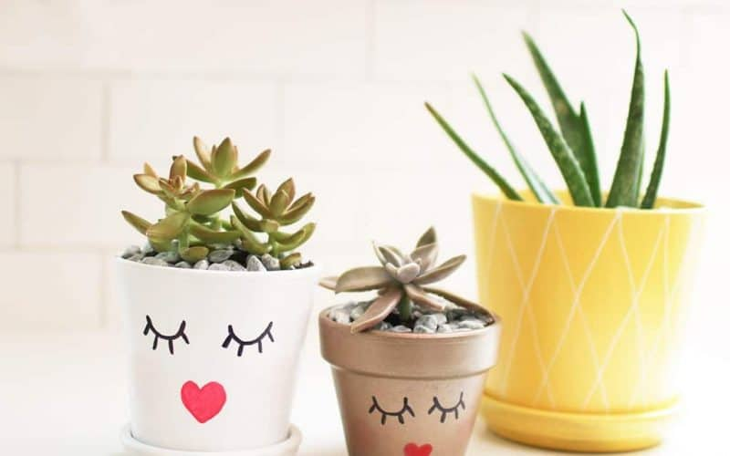 DIY  //  SUMMERY PLANTER POTS