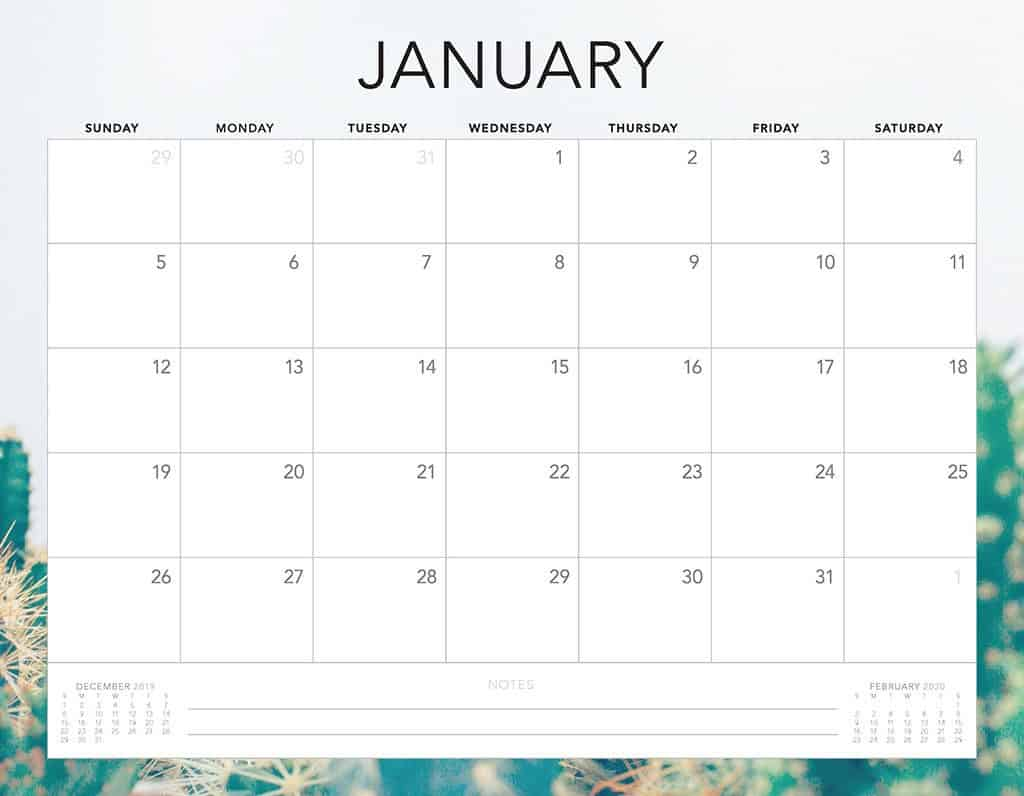 cactus 2020 free calendar