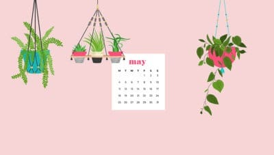 free May wallpapers - hanging plants for desktop