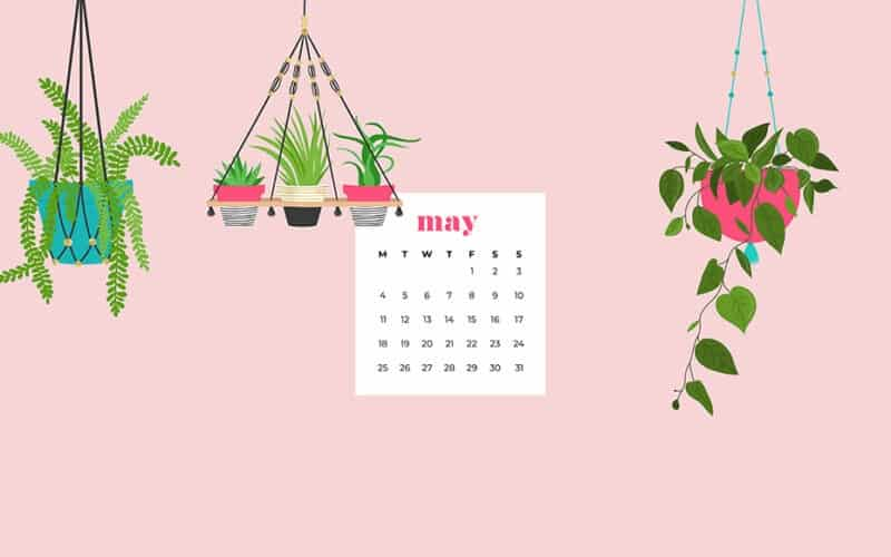9 FREE MAY DESKTOP AND SMART PHONE WALLPAPERS