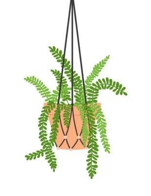 FREE plant art printable modern hanging
