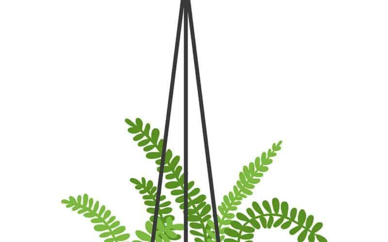 8 FUN & FREE PLANT ART PRINTABLES