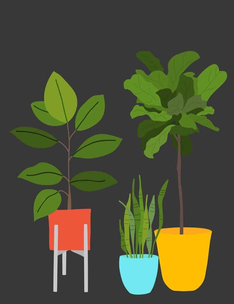 free modern plant printables black