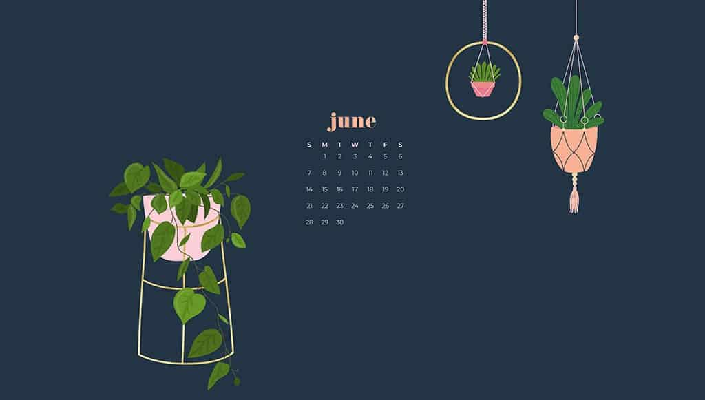 Free June wallpapers — modern plants