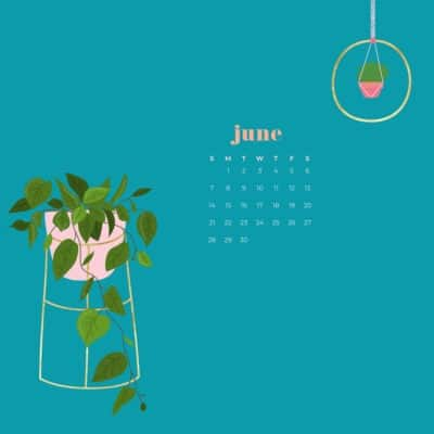 Free June wallpapers - modern hangin plants and plant stand