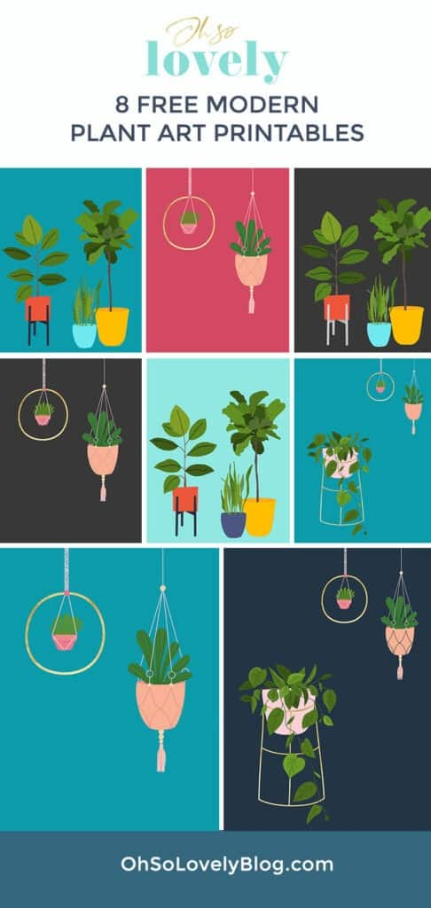 Free modern plant printables — 8 colorful and fun options to choose from! Simply download, print, and frame to update your walls!