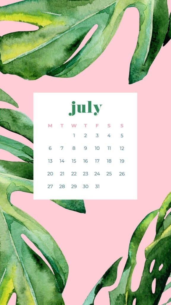 Free July wallpapers palm leaves and pink