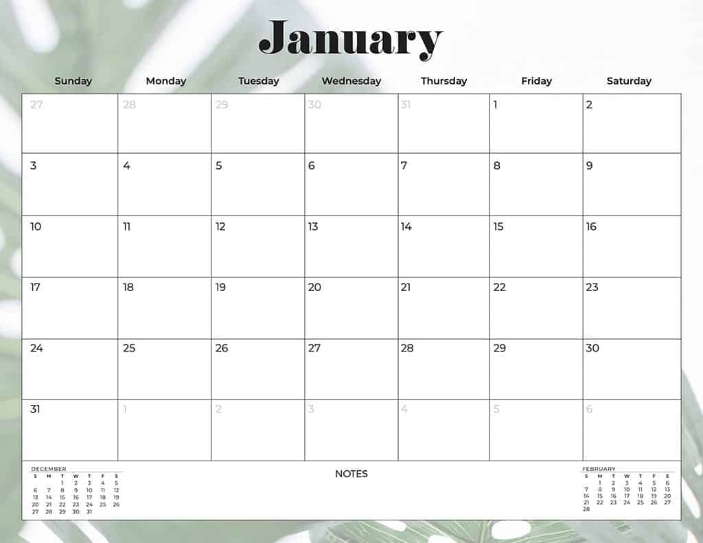 free 2021 printable calendars palm leaves