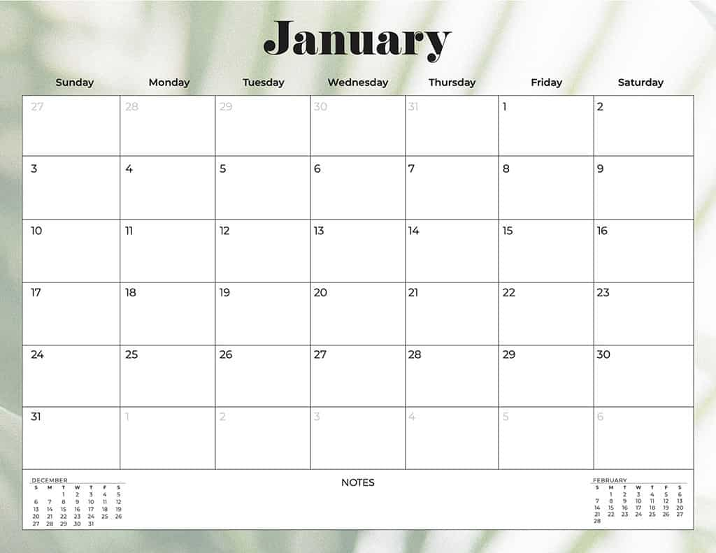 free 2021 calendars palm leaves