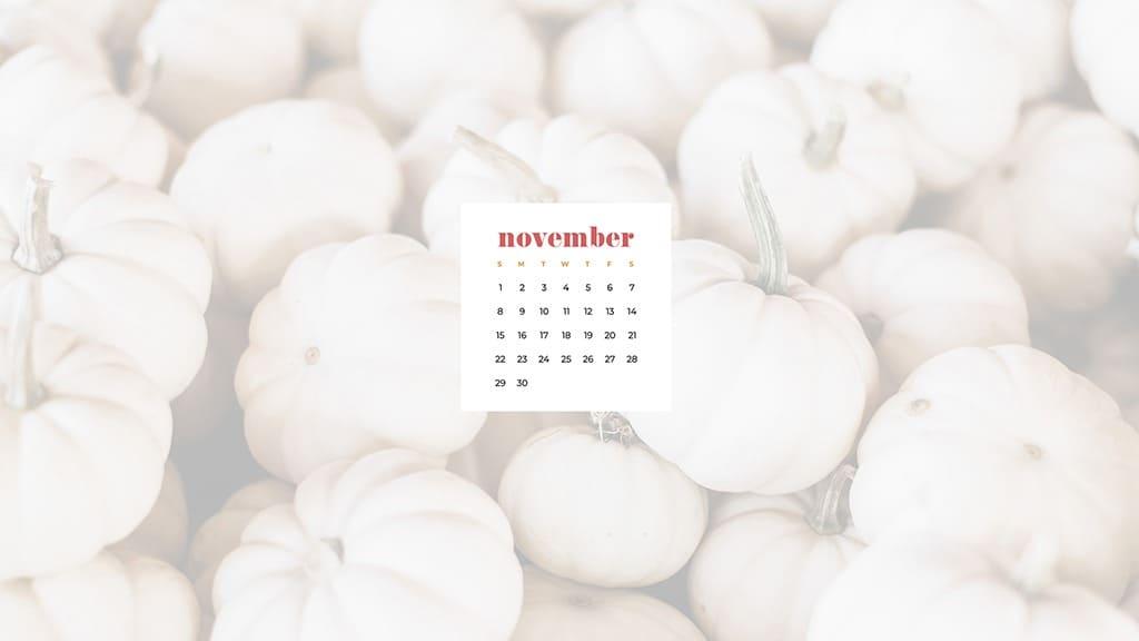Free November 2020 desktop calendar wallpapers — white pumpkins