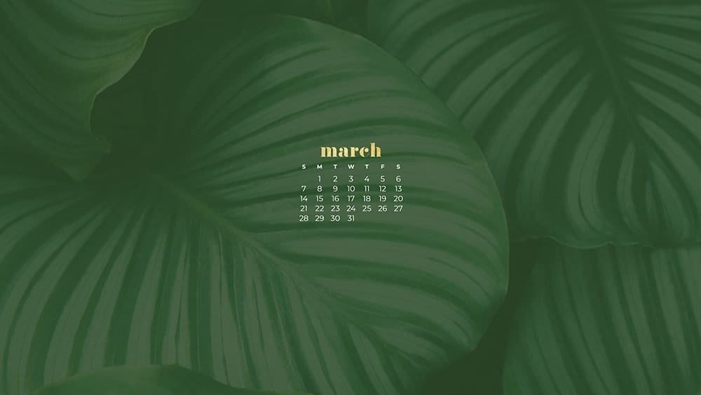 Green plant March wallpaper