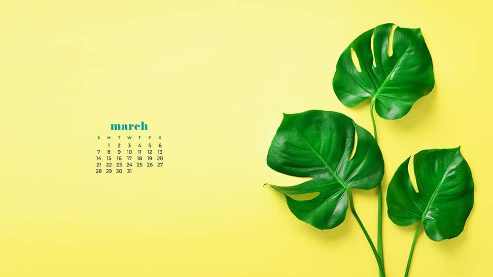 Green palm leaf wallpaper for March on yellow background