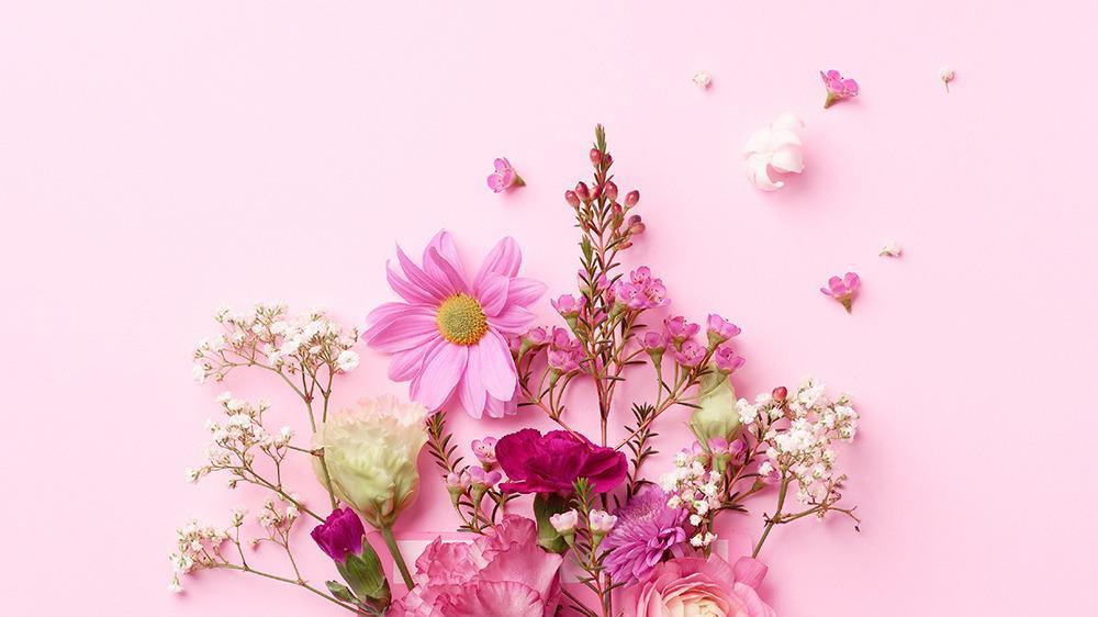 free plants desktop wallpaper with no calendar pink