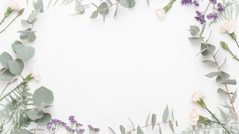 free plants desktop wallpaper with no calendar