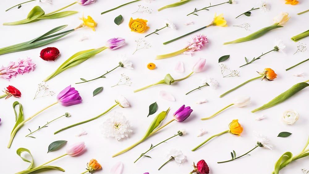 free floral desktop wallpaper with no calendar