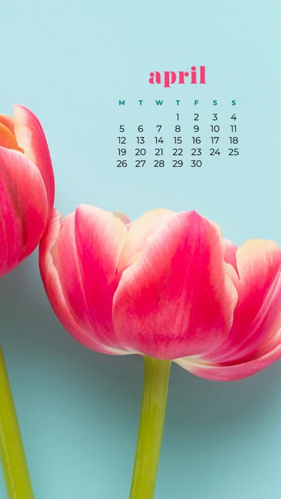 free flowers phone wallpaper with April 2021 calendar tulips