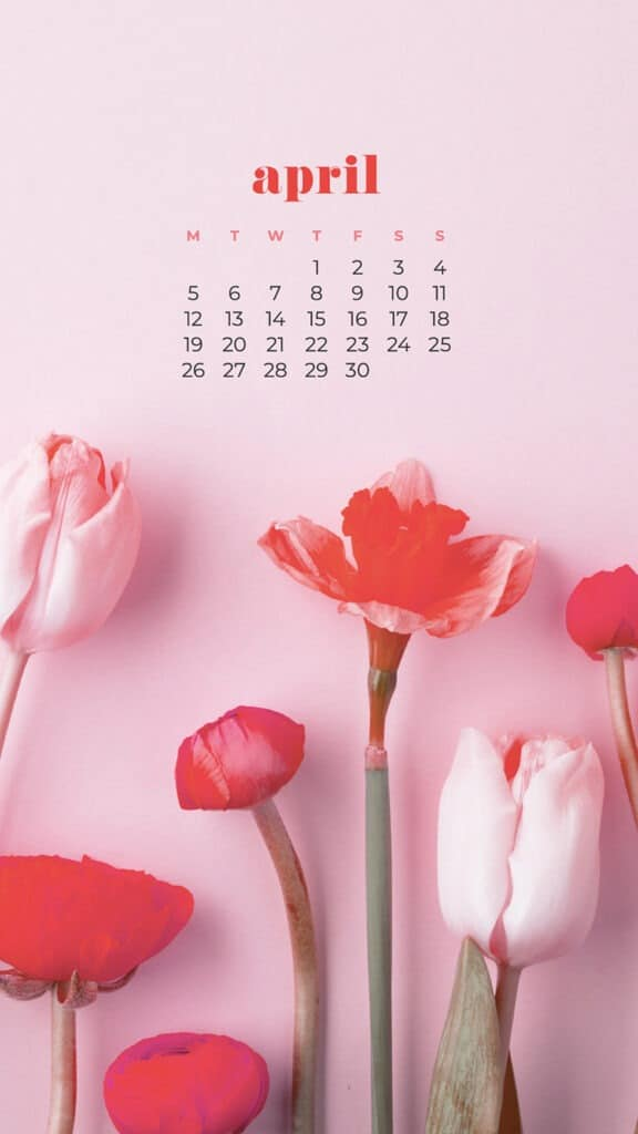 free pink tulips phone wallpaper with April 2021 calendar