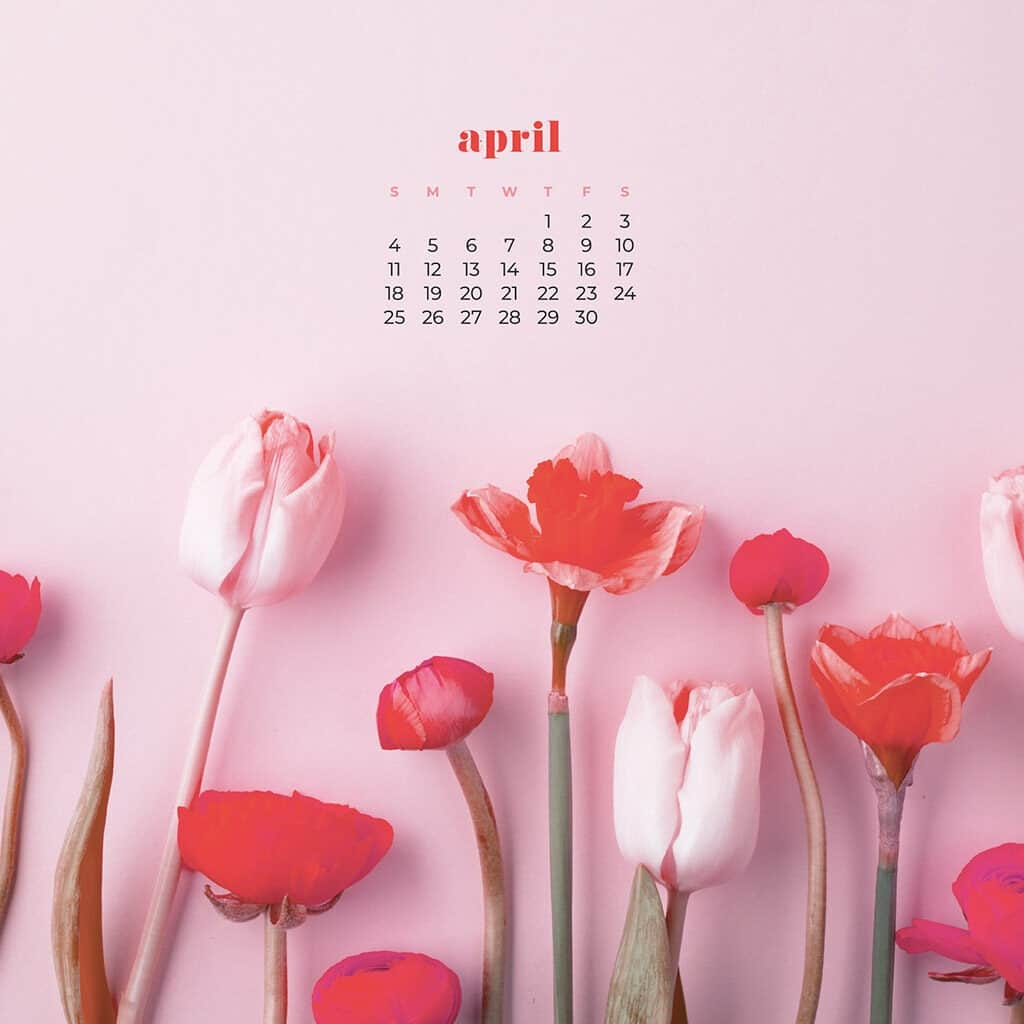 April 2021 calendar wallpapers – 30 FREE & cute options in Sunday & Monday starts + no calendar options for both desktop and smart phone.