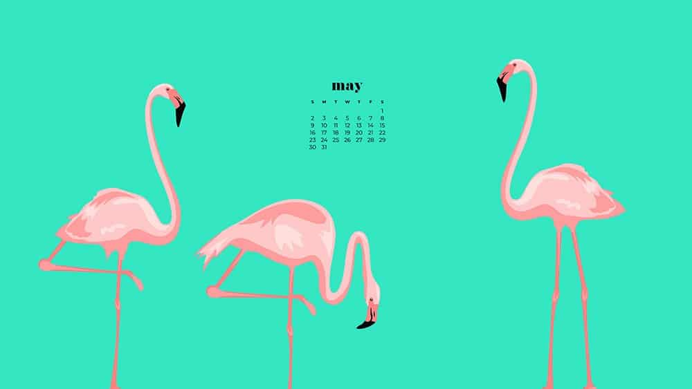 pink flamingo illustrations on a green background with