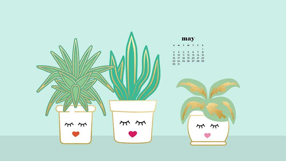 modern illustrated plants in a white pot with a feminine face on aqua background