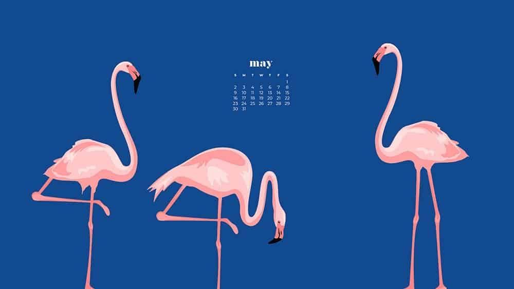 pink flamingo illustrations on a navy purple background with