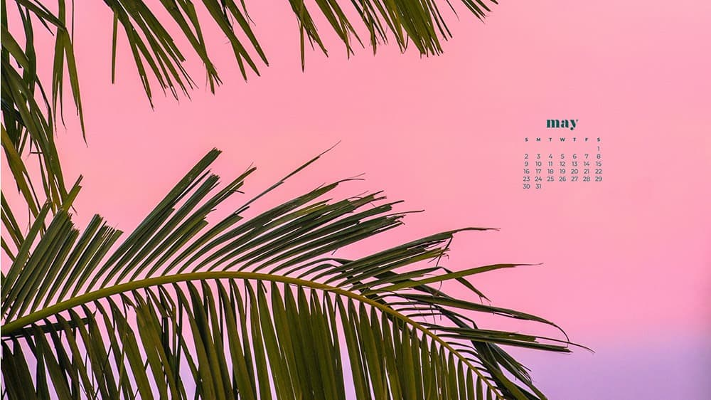 pink and purple background with palm trees desktop wallpaper
