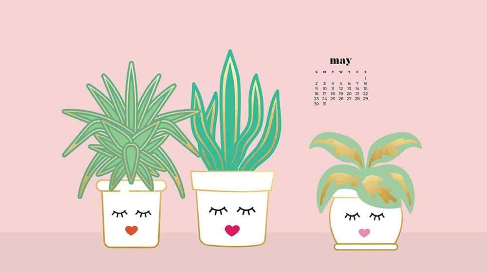 modern illustrated plants in a white pot with a feminine face on pink background