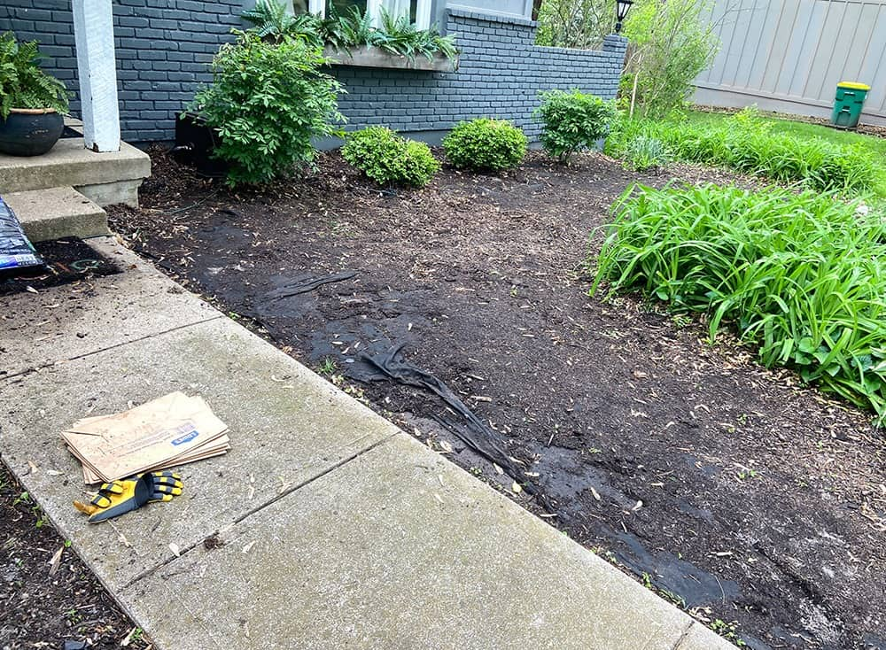before photo of landscaping and washed up mulch