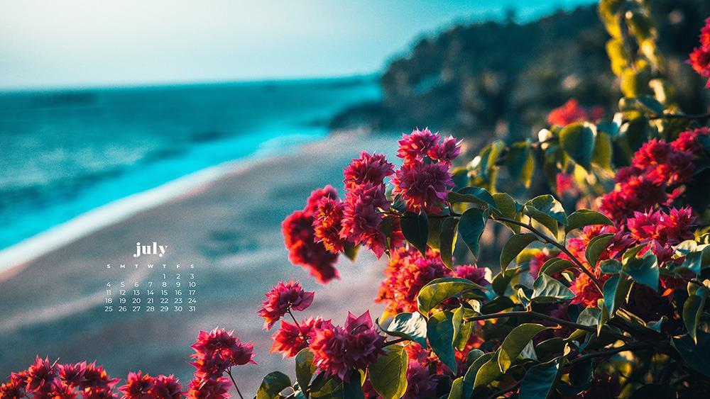July 2021 wallpaper calendar ocean, cliffs, and colorful flowers