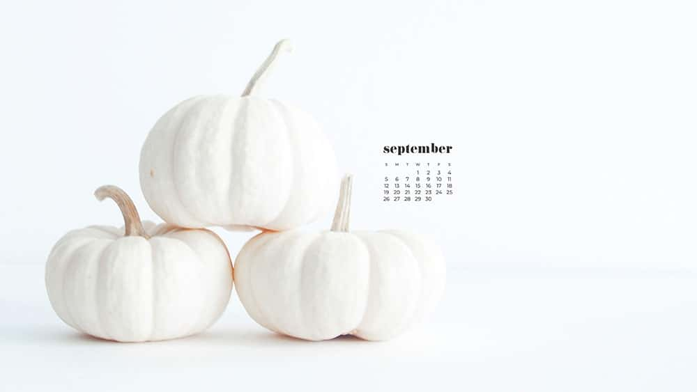 three mini stacked white pumpkins FREE wallpaper calendars in Sunday and Monday starts + no-calendar options. 35 designs for both desktop and smart phones!