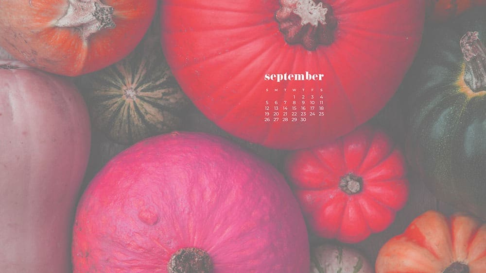 arial view of pink and green pumpkins September 2021 - FREE wallpaper calendars in Sunday and Monday starts + no-calendar options. 35 designs for both desktop and smart phones!