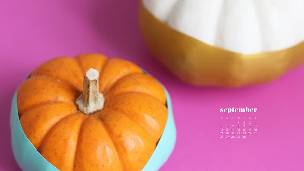 2 small paint dipped pumpkins on a hot pink background FREE wallpaper calendars in Sunday and Monday starts + no-calendar options. 35 designs for both desktop and smart phones!