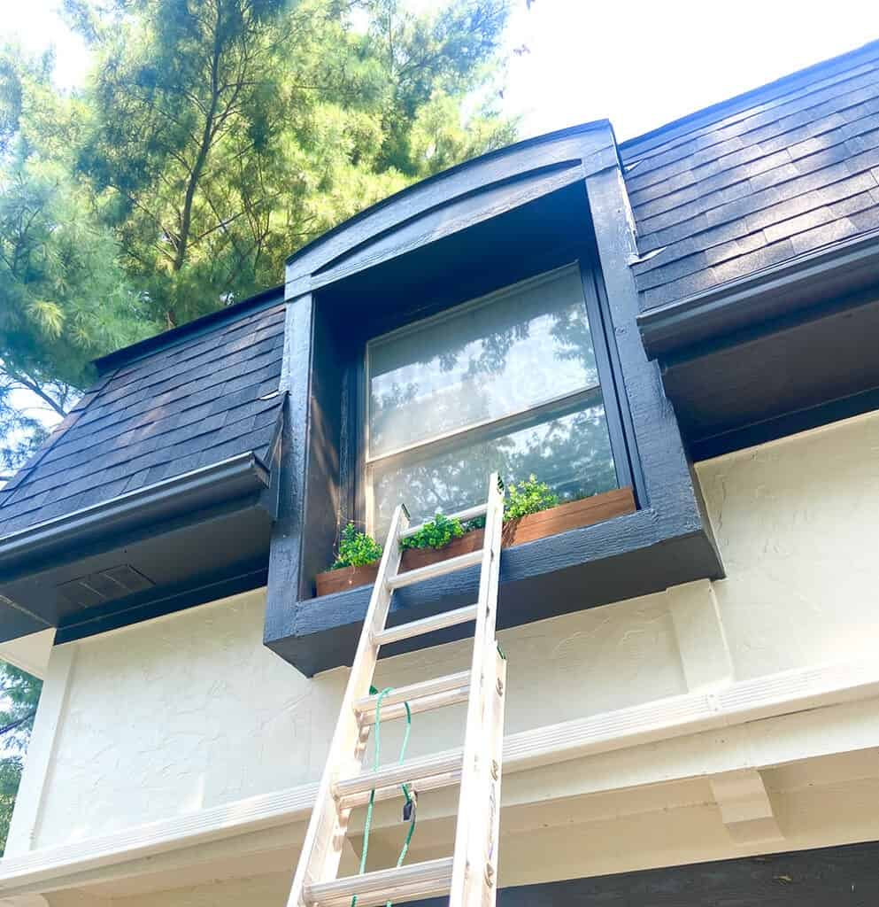 climb ladder to decorate window boxes