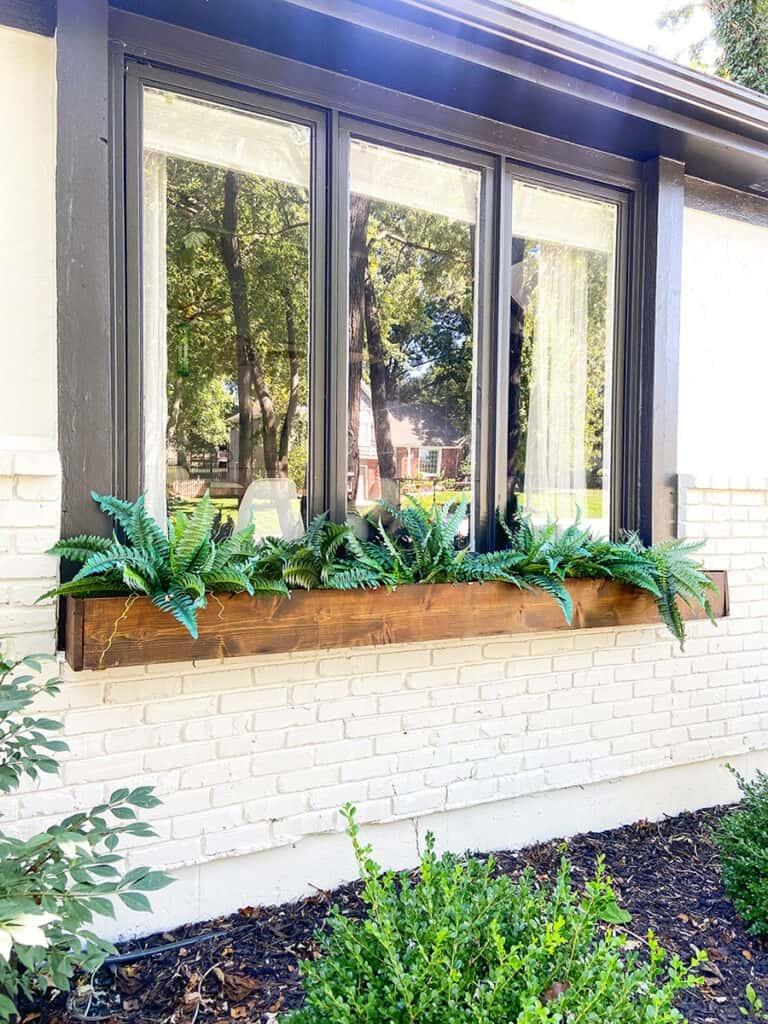 faux ferns in window box