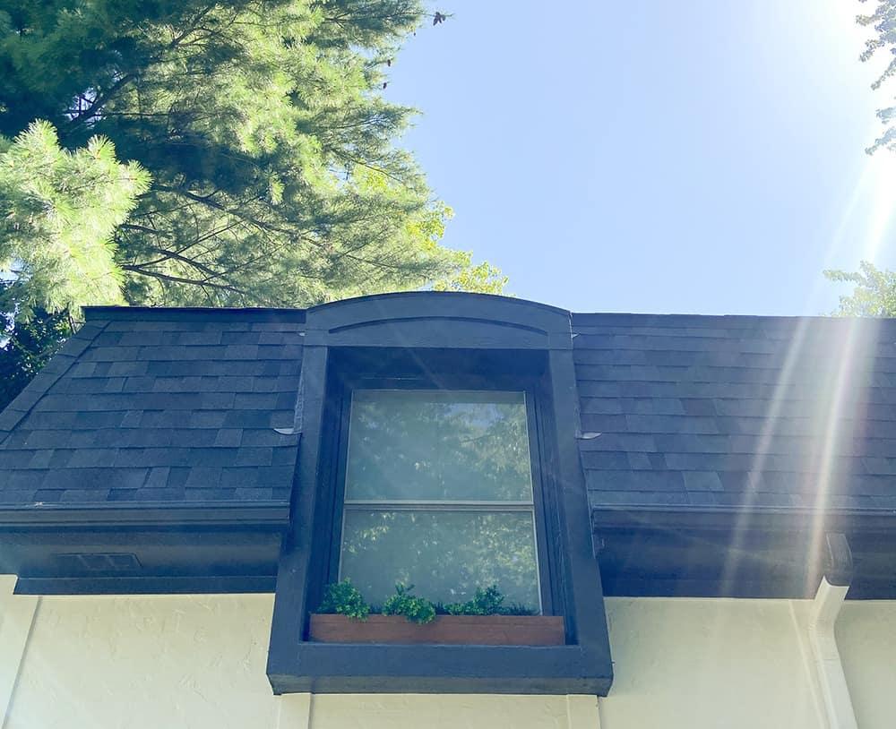 decorate window boxes