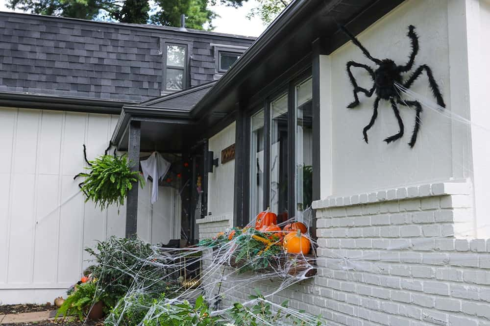 a window box full of light up pumpkins, skulls, and spiderwebs and large fuzzy spider