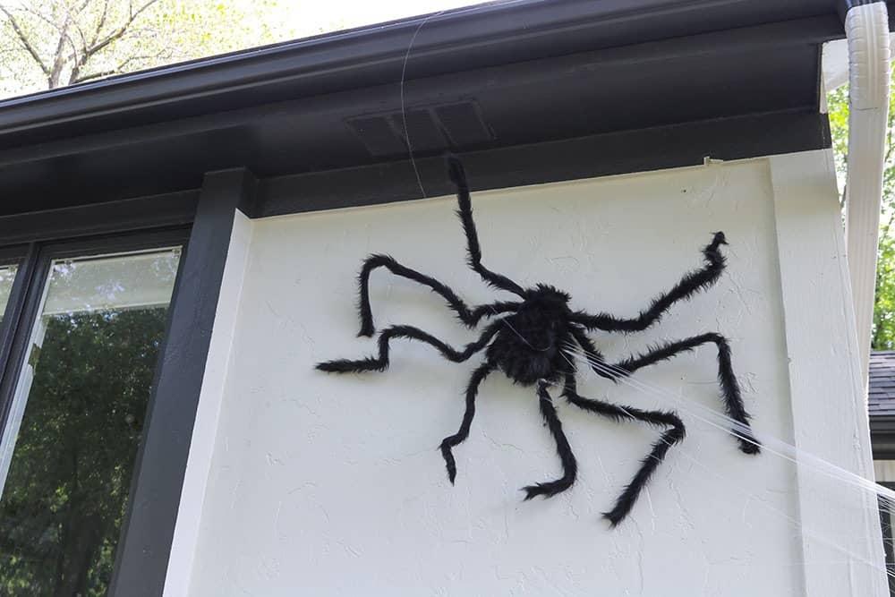 Large fuzzy black spider decor on house