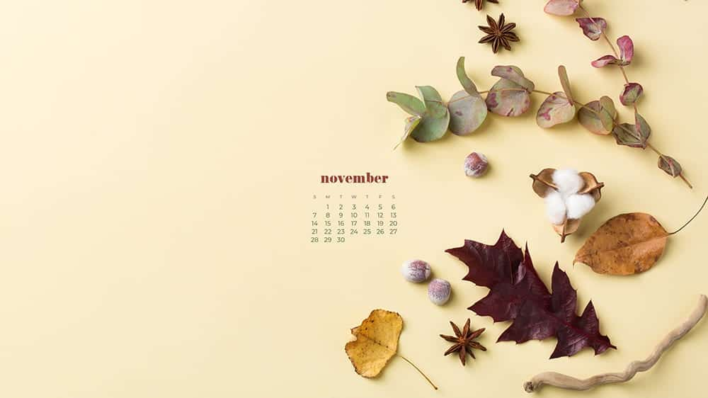 fall foliage leaves, plants, nuts on light yellow background with a calendar November 2021 - FREE wallpaper calendars in Sunday & Monday starts + no-calendar designs. 35 options for both desktop and smart phones!