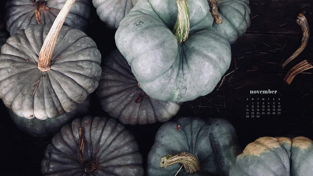 pretty blue, green, and gray pumpkins November - FREE wallpaper calendars in Sunday & Monday starts + no-calendar designs. 35 options for both desktop and smart phones!