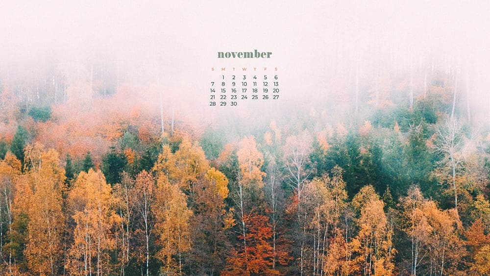 colorful Fall trees with fog November - FREE wallpaper calendars in Sunday & Monday starts + no-calendar designs. 35 options for both desktop and smart phones!