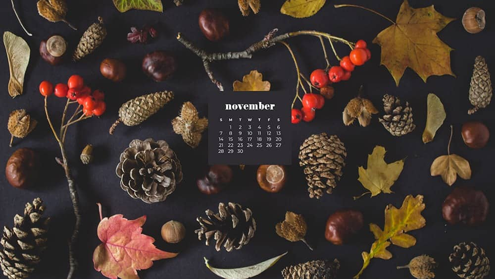 Fall foliage flat lay on a dark charcoal gray background November - FREE wallpaper calendars in Sunday & Monday starts + no-calendar designs. 35 options for both desktop and smart phones!